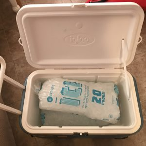 Ice Chest Cooler
